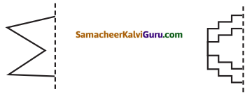 Samacheer Kalvi 5th Maths Guide Term 1 Chapter 1 வடிவியல் InText Questions 8