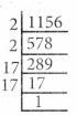Samacheer Kalvi 8th Maths Guide Chapter 1 எண்கள் Ex 1.4 7