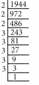 Samacheer Kalvi 8th Maths Guide Chapter 1 எண்கள் Ex 1.5 1