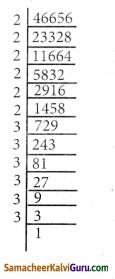 Samacheer Kalvi 8th Maths Guide Chapter 1 எண்கள் Ex 1.5 7