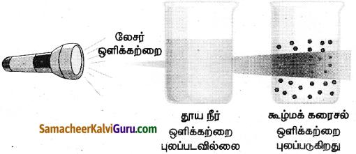 Samacheer Kalvi 9th Science Guide Chapter 10 நம்மைச் சுற்றியுள்ள பொருட்கள் 6