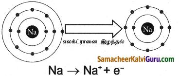 Samacheer Kalvi 9th Science Guide Chapter 13 வேதிப்பிணைப்பு 2