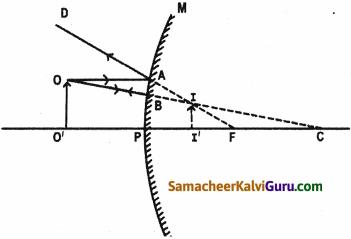 Samacheer Kalvi 9th Science Guide Chapter 6 ஒளி 11