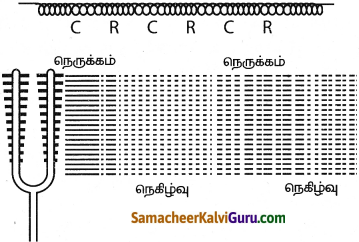 Samacheer Kalvi 9th Science Guide Chapter 8 ஒலி 2