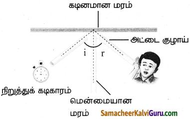 Samacheer Kalvi 9th Science Guide Chapter 8 ஒலி 3