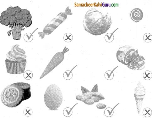 Samacheer Kalvi 4th Science Guide Term 1 Chapter 1 எனது உடல் 4