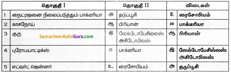 Samacheer Kalvi 8th Science Guide Chapter 16 நுண்ணியிரிகள் 1