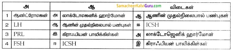 Samacheer Kalvi 8th Science Guide Chapter 20 வளரிளம் பருவமடைதல் 4