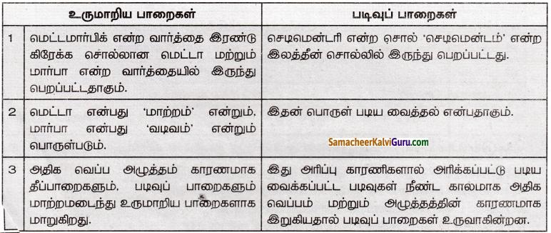 Samacheer Kalvi 8th Social Science Guide Geography Chapter 1 பாறை மற்றும் மண் 3