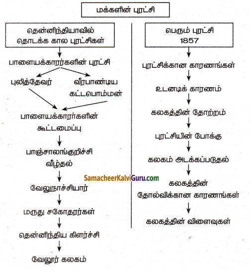 Samacheer Kalvi 8th Social Science Guide History Chapter 4 மக்களின் புரட்சி 3