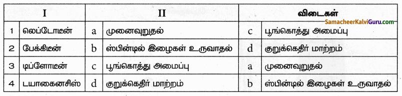Samacheer Kalvi 9th Science Guide Chapter 18 திசுக்களின் அமைப்பு 61