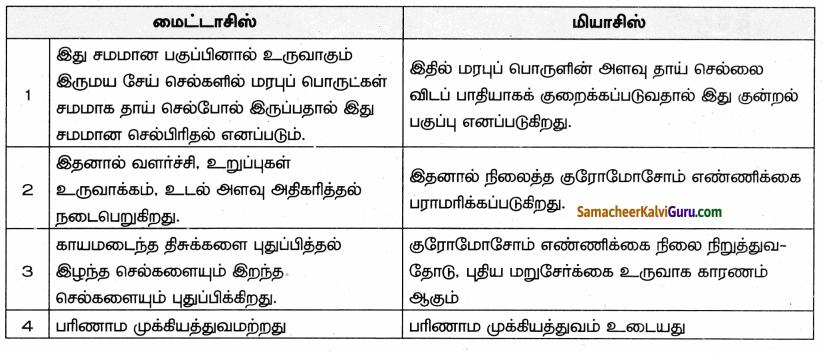 Samacheer Kalvi 9th Science Guide Chapter 18 திசுக்களின் அமைப்பு 93