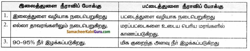 Samacheer Kalvi 9th Science Guide Chapter 19 தாவர உலகம் – தாவர செயலியல் 80