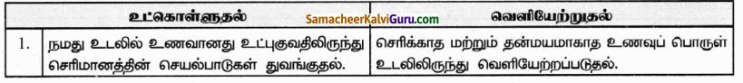 Samacheer Kalvi 9th Science Guide Chapter 20 விலங்குகளின் உறுப்பு மண்டலங்கள் 43