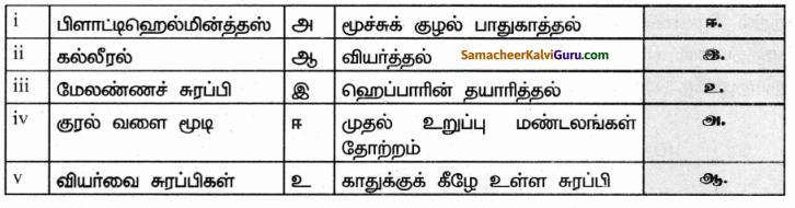 Samacheer Kalvi 9th Science Guide Chapter 20 விலங்குகளின் உறுப்பு மண்டலங்கள் 69