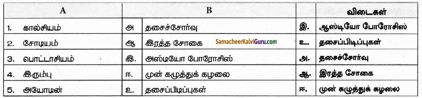 Samacheer Kalvi 9th Science Guide Chapter 21 ஊட்டச்சத்து மற்றும் ஆரோக்கியம் 31