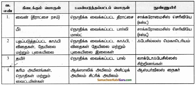 Samacheer Kalvi 9th Science Guide Chapter 22 நுண்ணுயிரிகளின் உலகம் 40