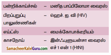 Samacheer Kalvi 9th Science Guide Chapter 22 நுண்ணுயிரிகளின் உலகம் 50