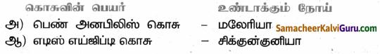 Samacheer Kalvi 9th Science Guide Chapter 22 நுண்ணுயிரிகளின் உலகம் 68