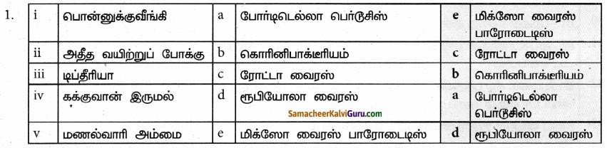 Samacheer Kalvi 9th Science Guide Chapter 22 நுண்ணுயிரிகளின் உலகம் 80