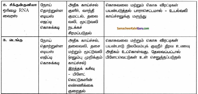 Samacheer Kalvi 9th Science Guide Chapter 22 நுண்ணுயிரிகளின் உலகம் 96
