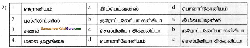 Samacheer Kalvi 9th Science Guide Chapter 23 பொருளாதார உயிரியல் 86