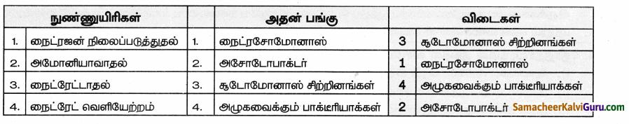 Samacheer Kalvi 9th Science Guide Chapter 24 சூழ்நிலை அறிவியல் 55