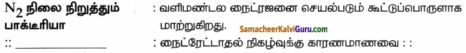 Samacheer Kalvi 9th Science Guide Chapter 24 சூழ்நிலை அறிவியல் 80