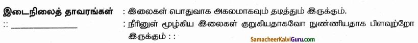 Samacheer Kalvi 9th Science Guide Chapter 24 சூழ்நிலை அறிவியல் 82