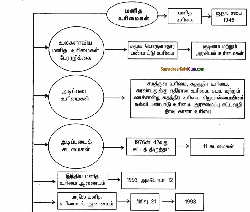 Samacheer Kalvi 9th Social Science Guide Civics Chapter 3 மனித உரிமைகள் 90