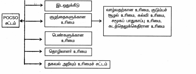 Samacheer Kalvi 9th Social Science Guide Civics Chapter 3 மனித உரிமைகள் 91