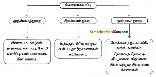 Samacheer Kalvi 9th Social Science Guide Economics Chapter 2 இந்தியா மற்றும் தமிழ்நாட்டில் வேலைவாய்ப்பு 80