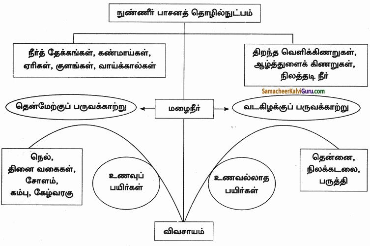 Samacheer Kalvi 9th Social Science Guide Economics Chapter 4 தமிழகத்தில் வேளாண்மை 90