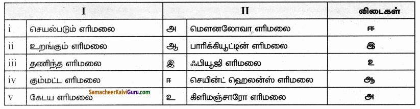 Samacheer Kalvi 9th Social Science Guide Geography Chapter 1 நிலக்கோளம் – I புவி அகச்செயல்பாடுகள் 85