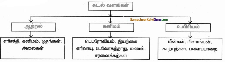 Samacheer Kalvi 9th Social Science Guide Geography Chapter 4 நீர்க்கோளம் 40