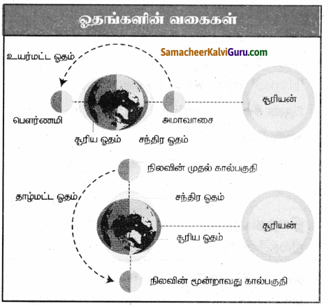 Samacheer Kalvi 9th Social Science Guide Geography Chapter 4 நீர்க்கோளம் 55