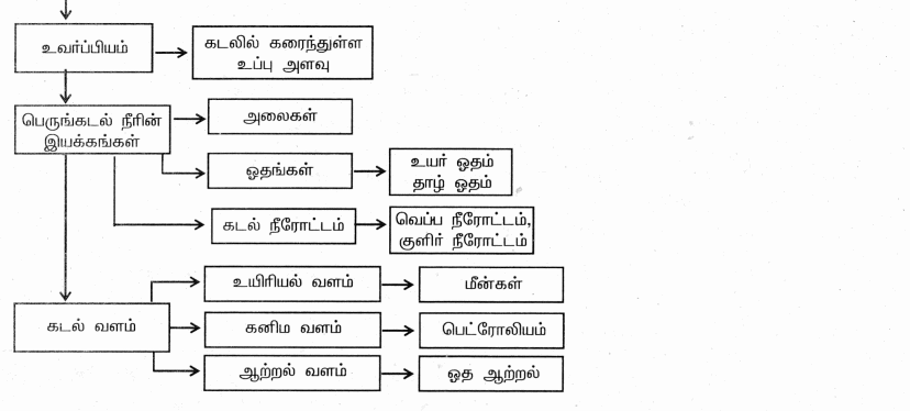 Samacheer Kalvi 9th Social Science Guide Geography Chapter 4 நீர்க்கோளம் 91