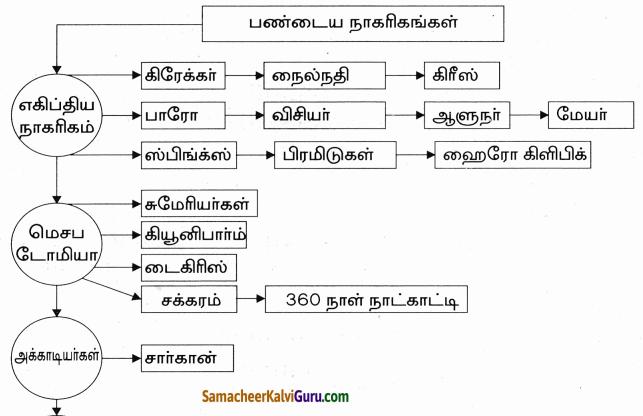 Samacheer Kalvi 9th Social Science Guide History Chapter 2 ண்டைய நாகரிகங்கள் 11