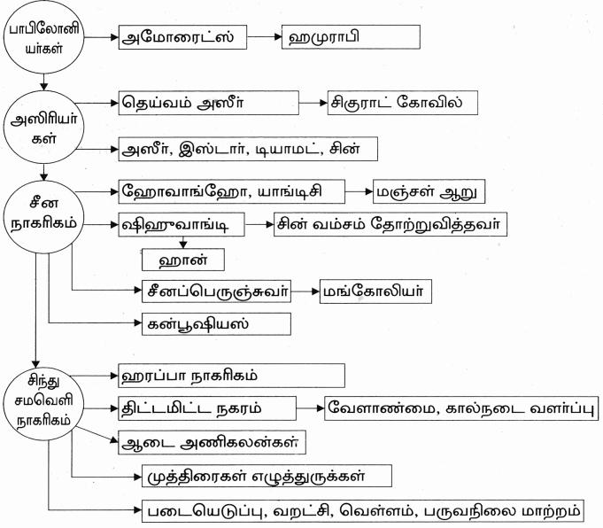 Samacheer Kalvi 9th Social Science Guide History Chapter 2 ண்டைய நாகரிகங்கள் 12