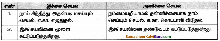 Samacheer Kalvi 10th Science Guide Chapter 15 நரம்பு மண்டலம் 62