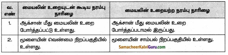 Samacheer Kalvi 10th Science Guide Chapter 15 நரம்பு மண்டலம் 63