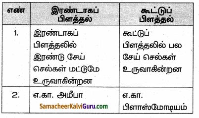 Samacheer Kalvi 10th Science Guide Chapter 17 தாவரங்கள் மற்றும் விலங்குகளில் இனப்பெருக்கம் 50