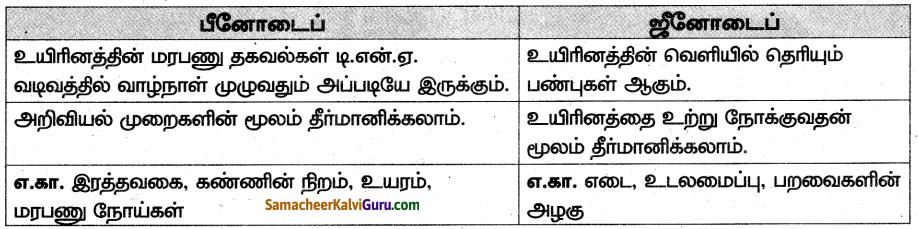 Samacheer Kalvi 10th Science Guide Chapter 18 மரபியல் 91