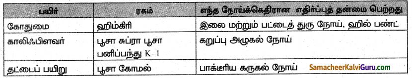 Samacheer Kalvi 10th Science Guide Chapter 20 இனக்கலப்பு மற்றும் உயிரித்தொழில்நுட்பவியல் 2
