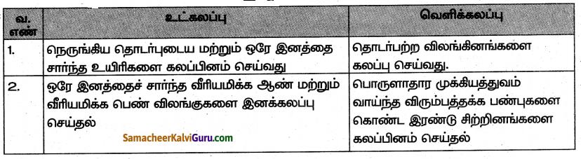 Samacheer Kalvi 10th Science Guide Chapter 20 இனக்கலப்பு மற்றும் உயிரித்தொழில்நுட்பவியல் 5
