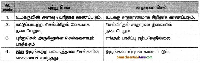 Samacheer Kalvi 10th Science Guide Chapter 21 உடல் நலம் மற்றும் நோய்கள் 2