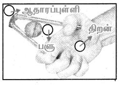 Samacheer Kalvi 4th Science Guide Term 1 Chapter 3 வேலை மற்றும் ஆற்றல் 21