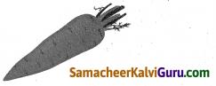 Samacheer Kalvi 4th Science Guide Term 2 Chapter 1 உணவு 1