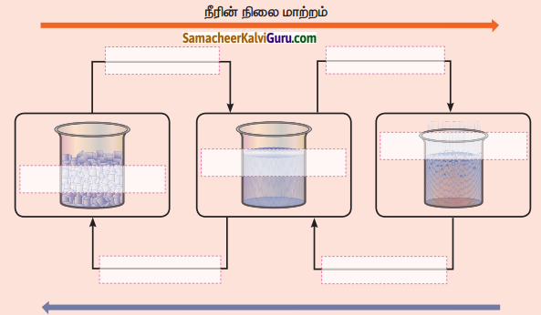 Samacheer Kalvi 4th Science Guide Term 2 Chapter 2 நீர் 5
