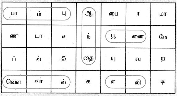 Samacheer Kalvi 4th Science Guide Term 3 Chapter 2 விலங்குகளின் வாழ்க்கை 6